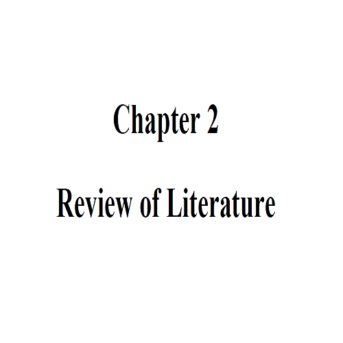 02ReviewofLiterature