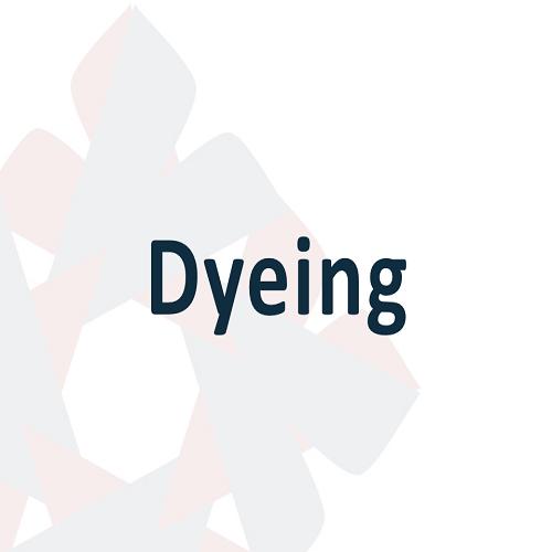 07 Dyeing